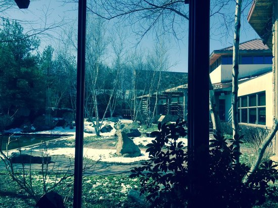 Nemacolin Woodlands Resort & Spa: View from Spa Lobby