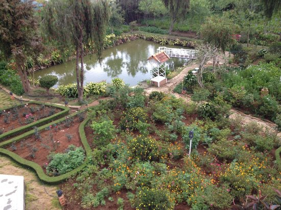 Terrasse des Roses : garden view from room
