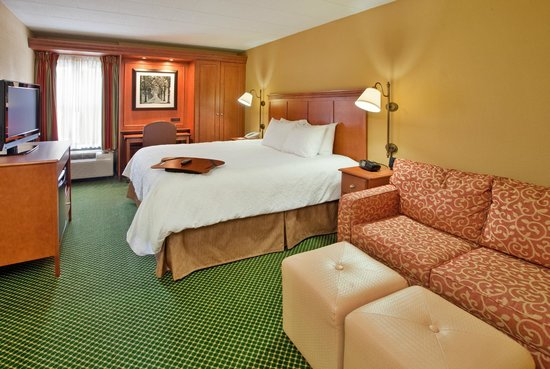 Hampton Inn Pittsburgh/Cranberry: King with Sofabed