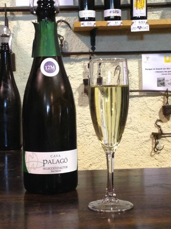 Barcelona Day Tours: Cava made from the region