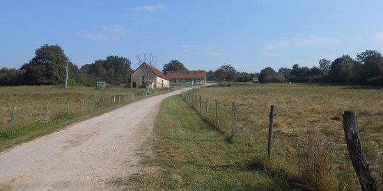 Le Domaine du Masoe des Chatards : Vista del parco