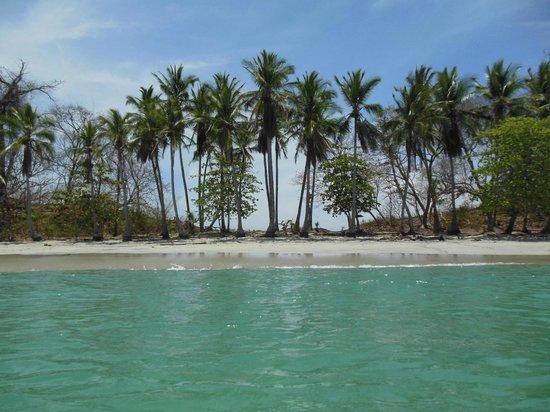 Hotel Bocas del Mar: Gamez island