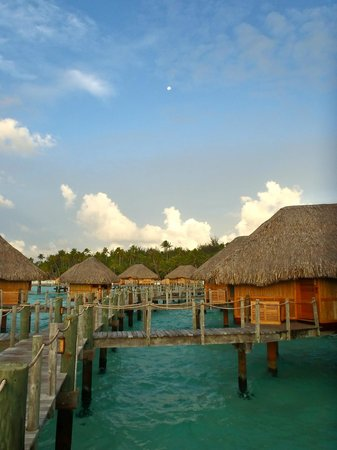 Bora Bora Pearl Beach Resort & Spa: beautiful morning with the moon up as well.