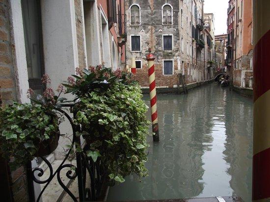 Starhotels Splendid Venice : Starhotel Splendid