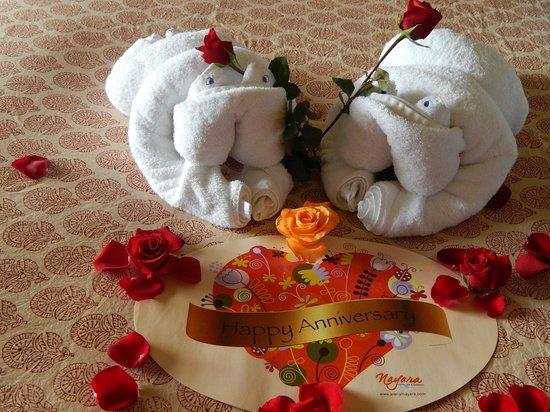 Nayara Resort Spa & Gardens: 10 Year Anniversary