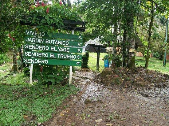 Centro Experimental Amazonico