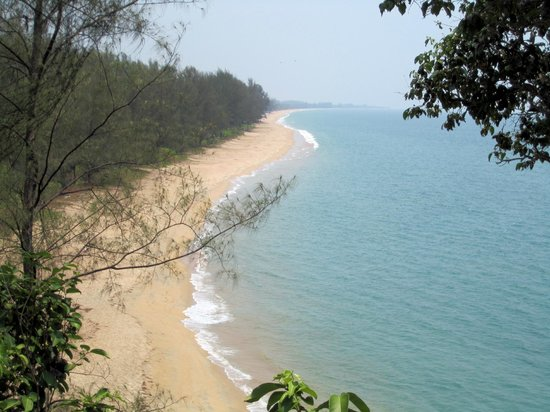 Phrathong Nature Resort: From turtle observation hill