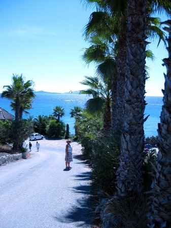 Paradise Beach: between the palms