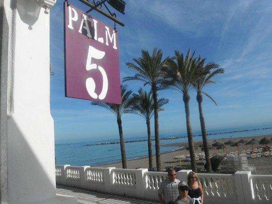 Palm 5 Beach Bar: magnificent view
