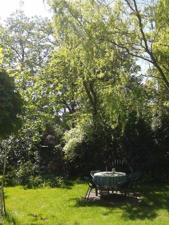 Akacja Pokoje i Apartementy: Ogród