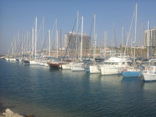 Gordon Inn Hotel: praia de Tel Aviv muito linda