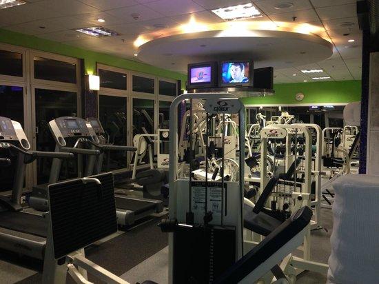 Sofitel Rio de Janeiro Ipanema: Gym