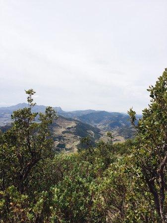 B&B Villa Pico: De omgeving