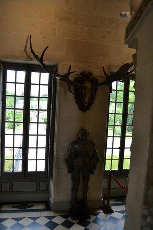 Château de Cheverny : Рога доисторического оленя из вечной мерзлоты в Сибири