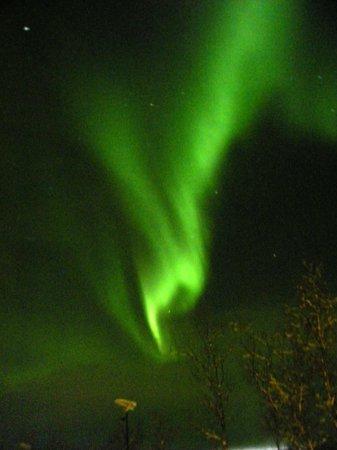 Mattarahkka - Northern Light Lodge: Aurora seen from outside the front door!