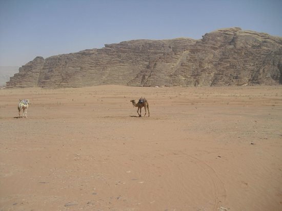 Classic Wadi Rum Tours - Private Day Tours: Classic Wadi Rum Tours and Camp