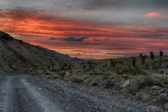 The Racetrack : Sunset from Racetrack Rd on way out with Joshua Trees