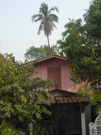Mandala House: piscine