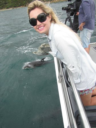Seafood Odyssea Cruise: Enjoying dolphin watching