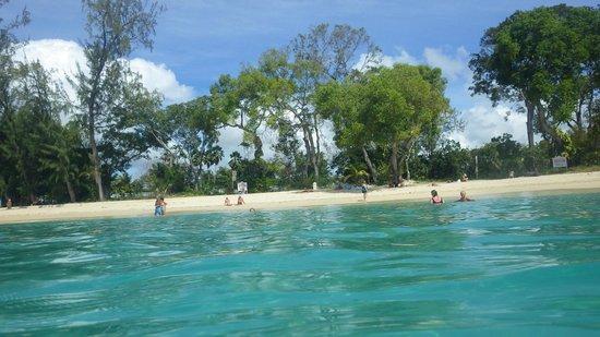 Shasa Catamaran Cruises: Private beach