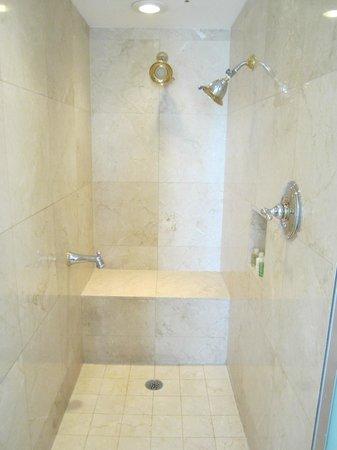 The Biltmore Hotel : Master Shower
