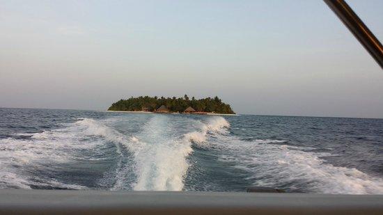 Angsana Ihuru : Ilha vista da lancha