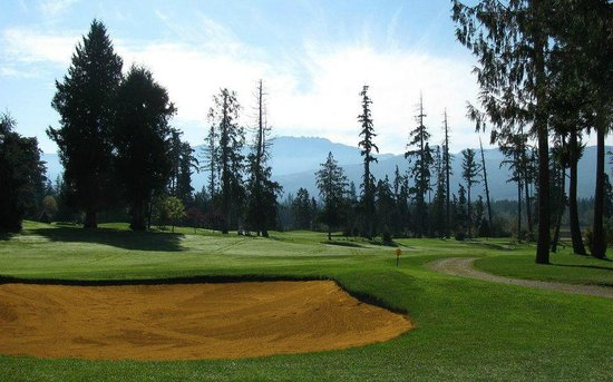 Arrowsmith Golf & Country Club: View of 8th hole