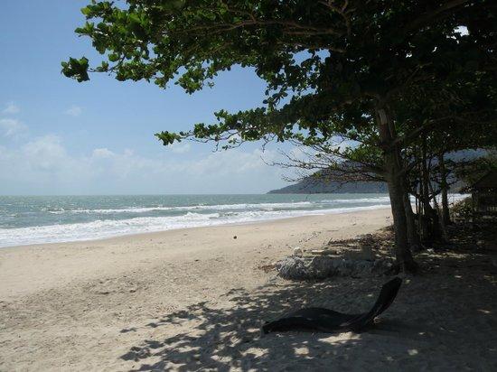 Aava Resort & Spa: Dejlig strand