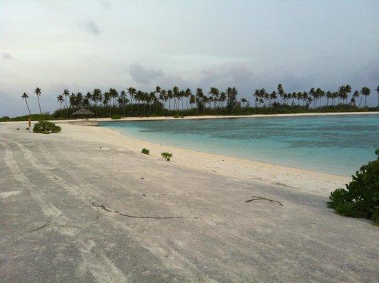 Olhuveli Beach & Spa Maldives: parte di spiaggia base molto piatta ,dura e grigia come cemento con sabbia riportata ..