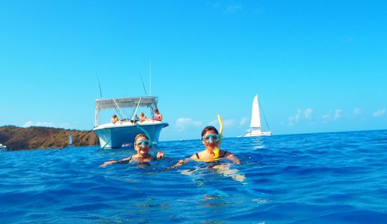 Patouche Charters: Norman Island Snorkeling