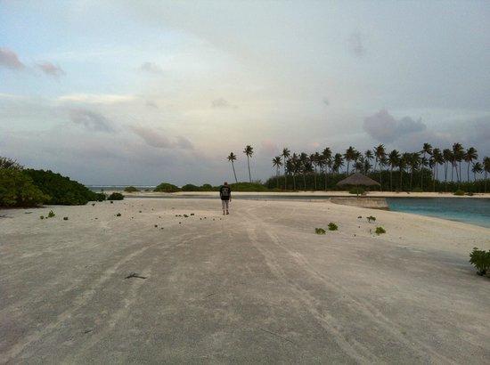 Olhuveli Beach & Spa Maldives: parte di spiaggia base molto piatta ,dura e grigia come cemento con sabbia riportata ...