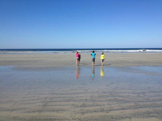 Nosara Tico Surf School : Wide Open Waves