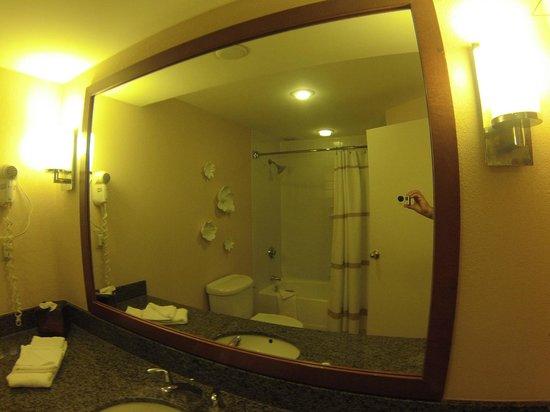 Savannah Marriott Riverfront: Banheiro