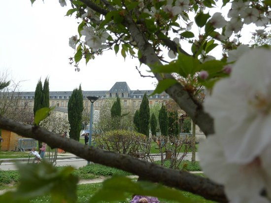 Kremlin Bicetre, France: fleurs