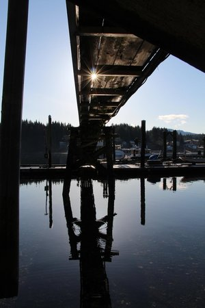 Cottages at Woods End Landing in Bamfield: Beautiful setting