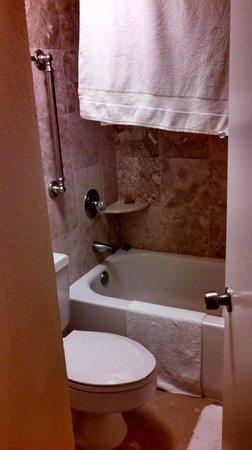 TradeWinds Island Grand Resort : Tiny shower/toilet room