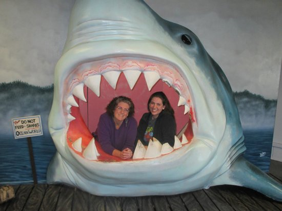 Ocean World : Eaten alive and lookin' happy about it!