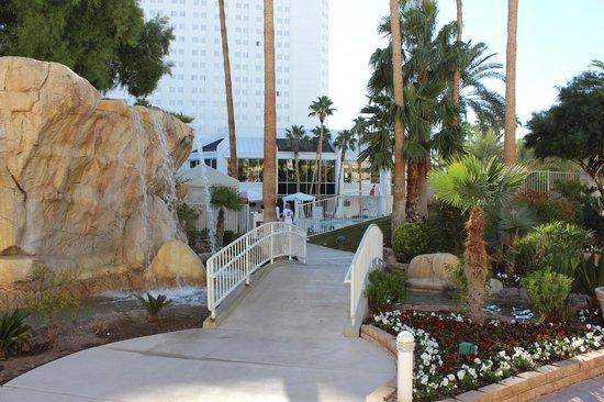 Tropicana Las Vegas - A DoubleTree by Hilton Hotel : garden/pool area