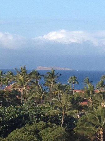 Grand Wailea - A Waldorf Astoria Resort: View from Terrace/Garden view room
