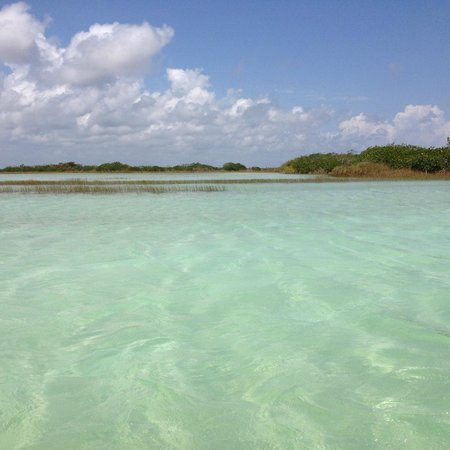 Riviera Adventours: lagoon at sian ka'an
