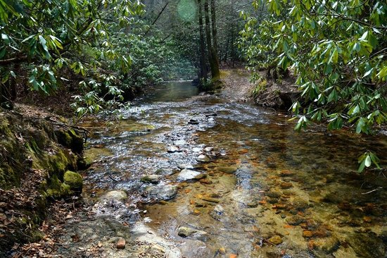 Stone Mountain State Park: Clear, cold water
