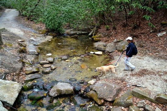 Stone Mountain State Park: Crossing the creek