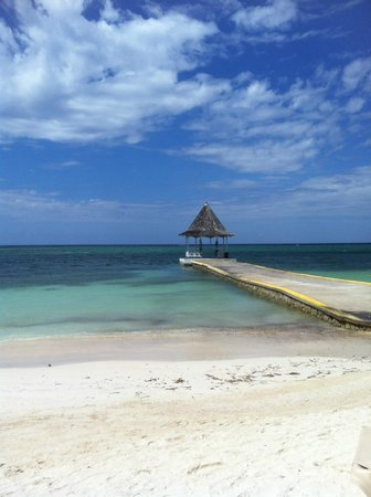 Sandals Montego Bay: Everything is beautiful