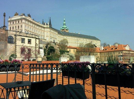 LoVeg: Vue de la terrasse