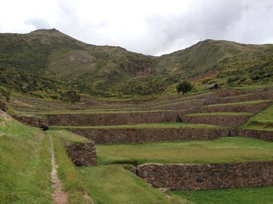 Tipón: Inca walls