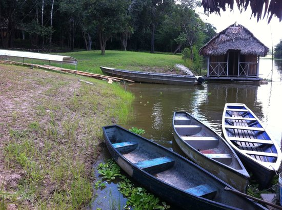 Muyuna Amazon Lodge : muelle del hotel