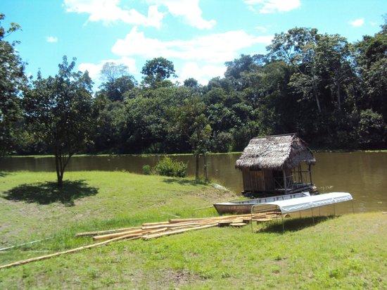 Muyuna Amazon Lodge: alrededores