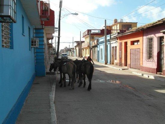 A Bienvenido En El Holandes: Die Pferde stehen für den Ausritt bereit
