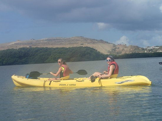 Virgin Islands Ecotours: kyaking st thomas mangroves