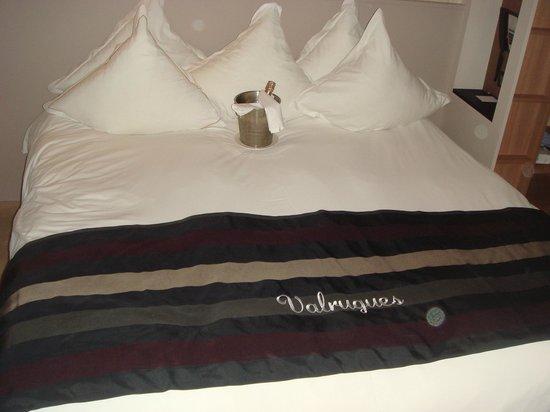 Hotel Le Vallon de Valrugues & Spa : accueil en chambre